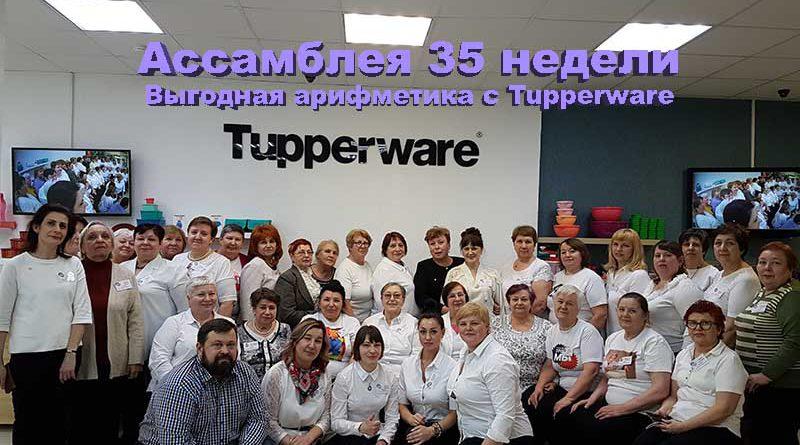 www.twnn.ru